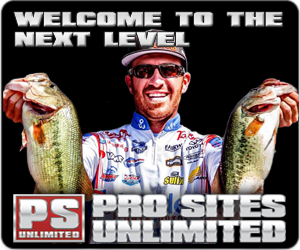 Pro Sites Unlimited